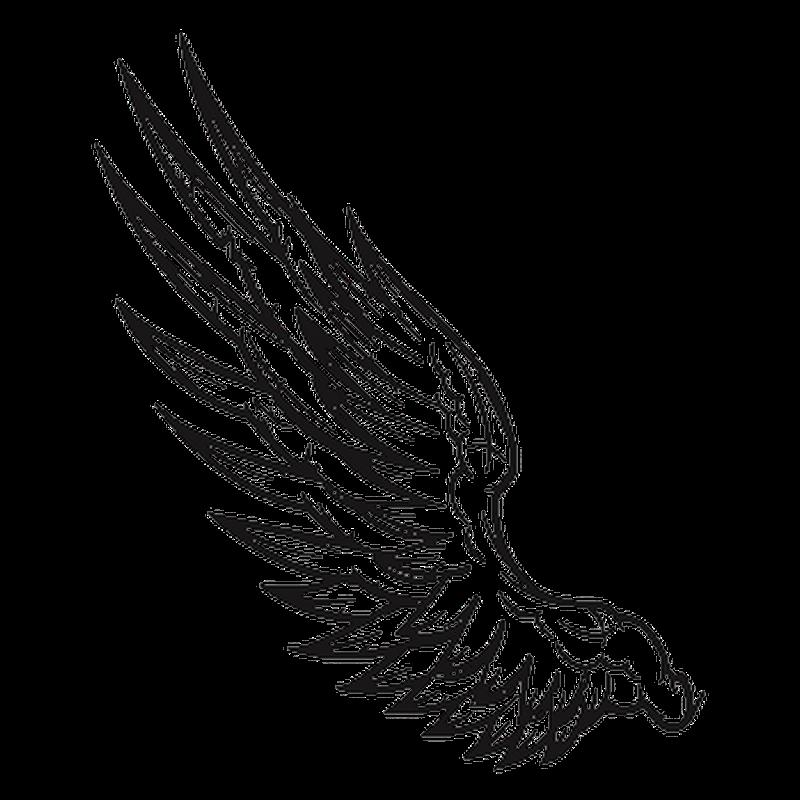 Sticker aile d 39 ange - Aile de dragon dessin ...