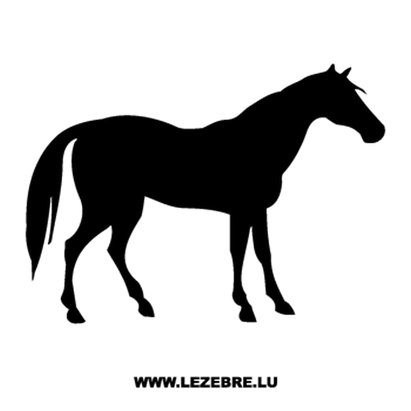 Horse Decal #4