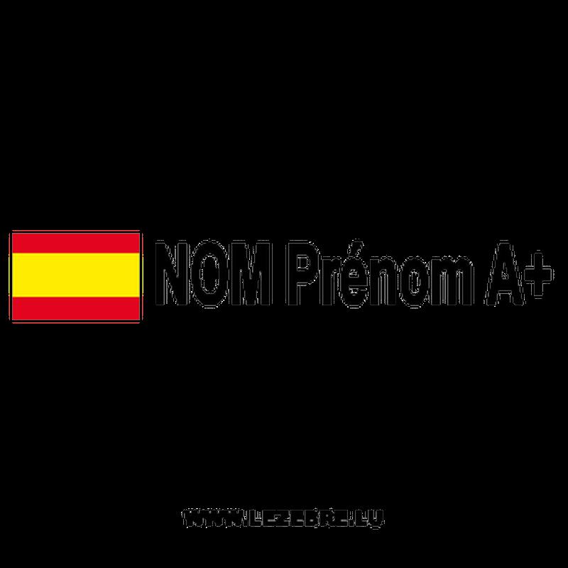 2x Spanish Flag Rally Pilot Custom Decals