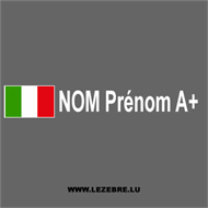 2x Italian flag rally pilot custom decals