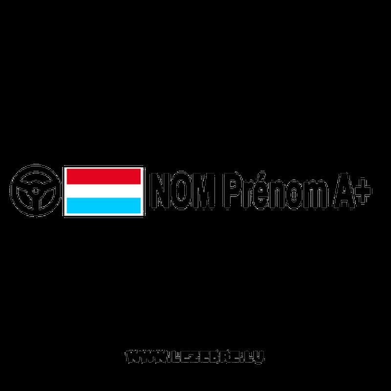 2x Luxembourg flag steering wheel pilot custom decals