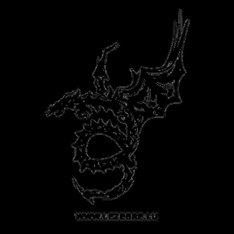 Tribal Dragon Design Decal