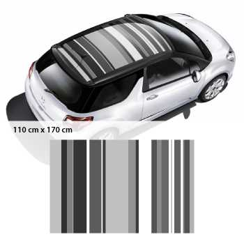 Citroën DS3 Art Graphic car roof sticker