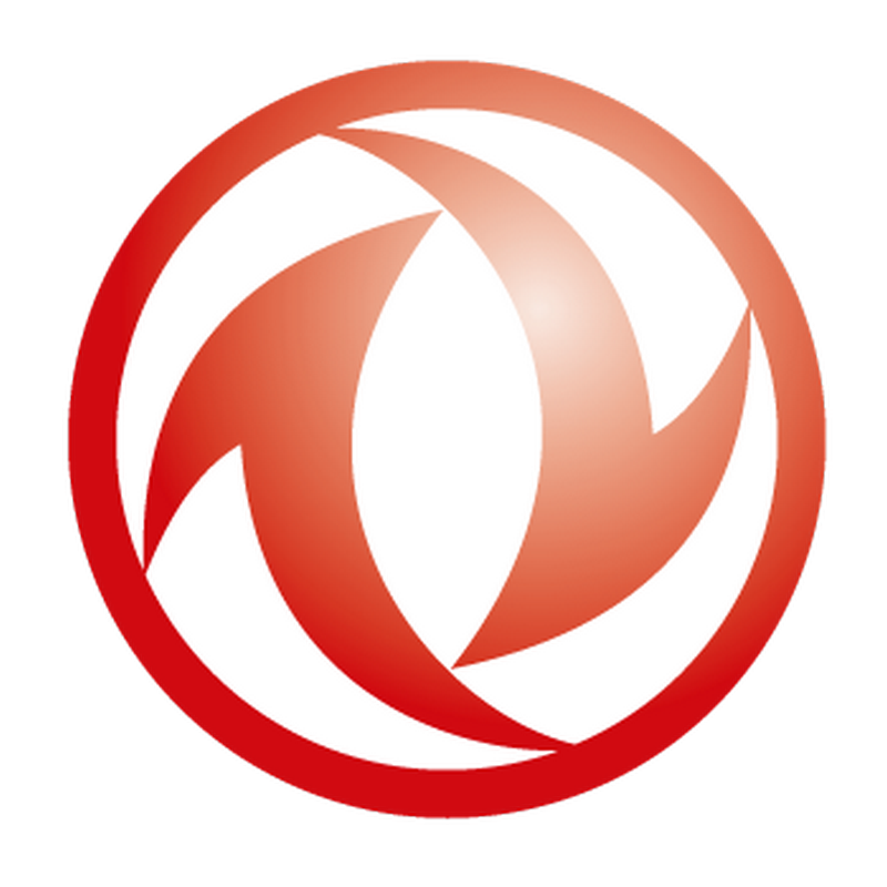 Dongfeng Logo Decal