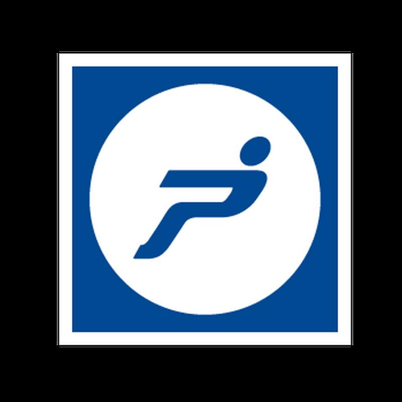 Fiat Punto Logo Decal