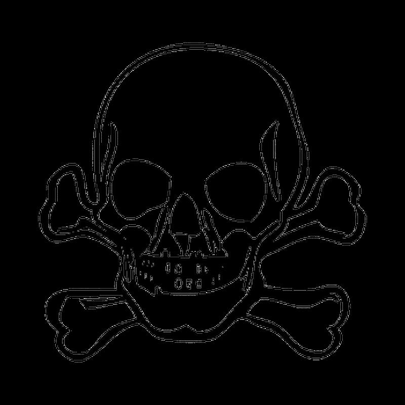 Skull Decal 2