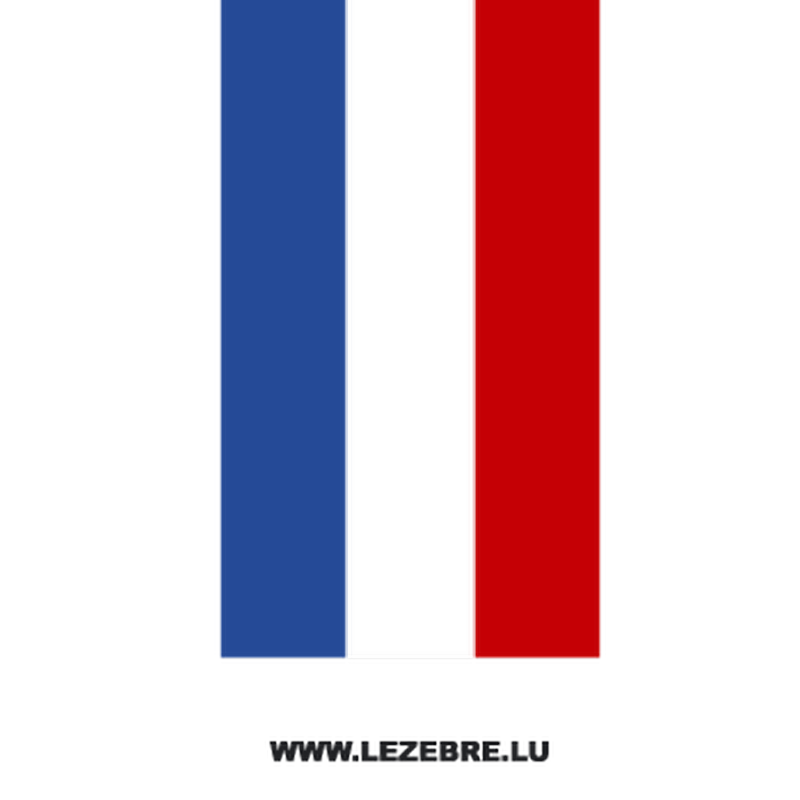 French flag motorcycle strip decal