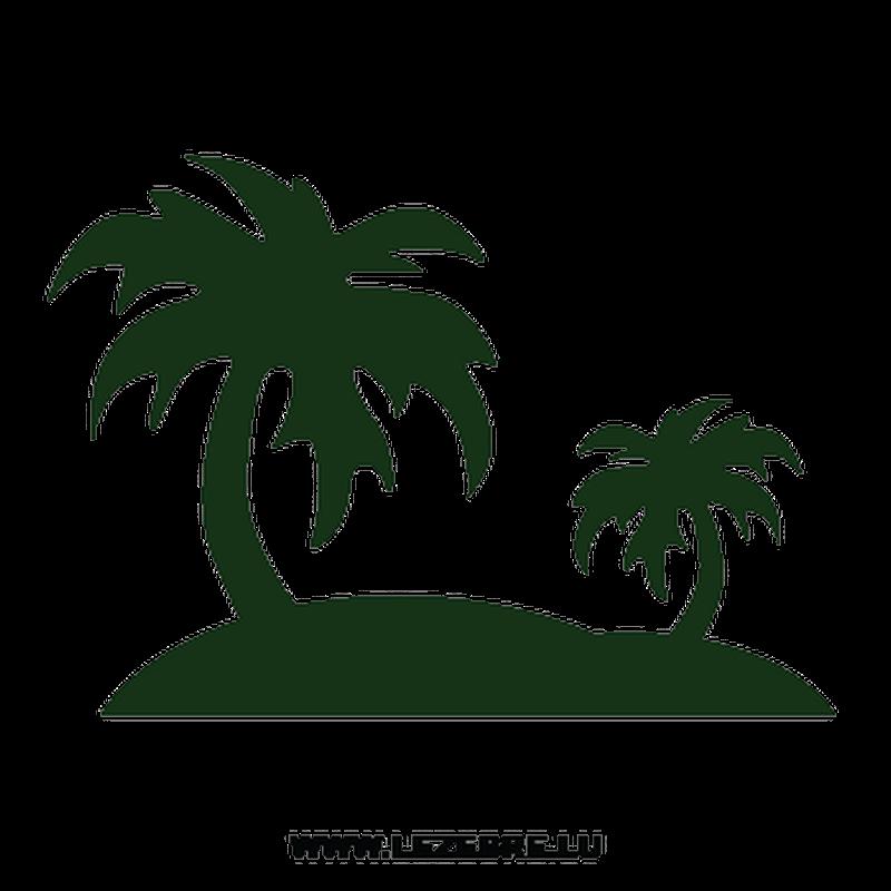 Sticker Déco Palmiers