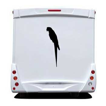 Parrot Camping Car Decal