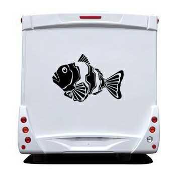 sticker camping car deco poissons 2. Black Bedroom Furniture Sets. Home Design Ideas