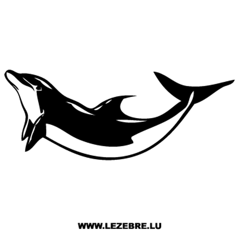 Dolphin Decal