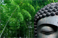 Stickers muraux geant Buddha
