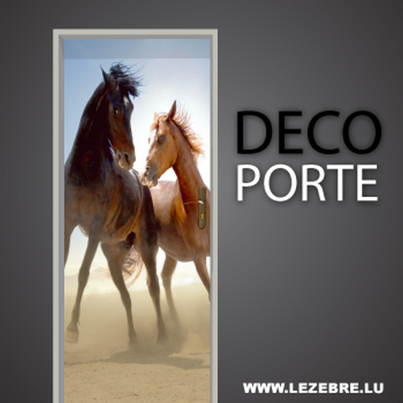 Horses door decal