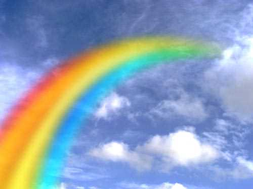 Rainbow Decoration Decal