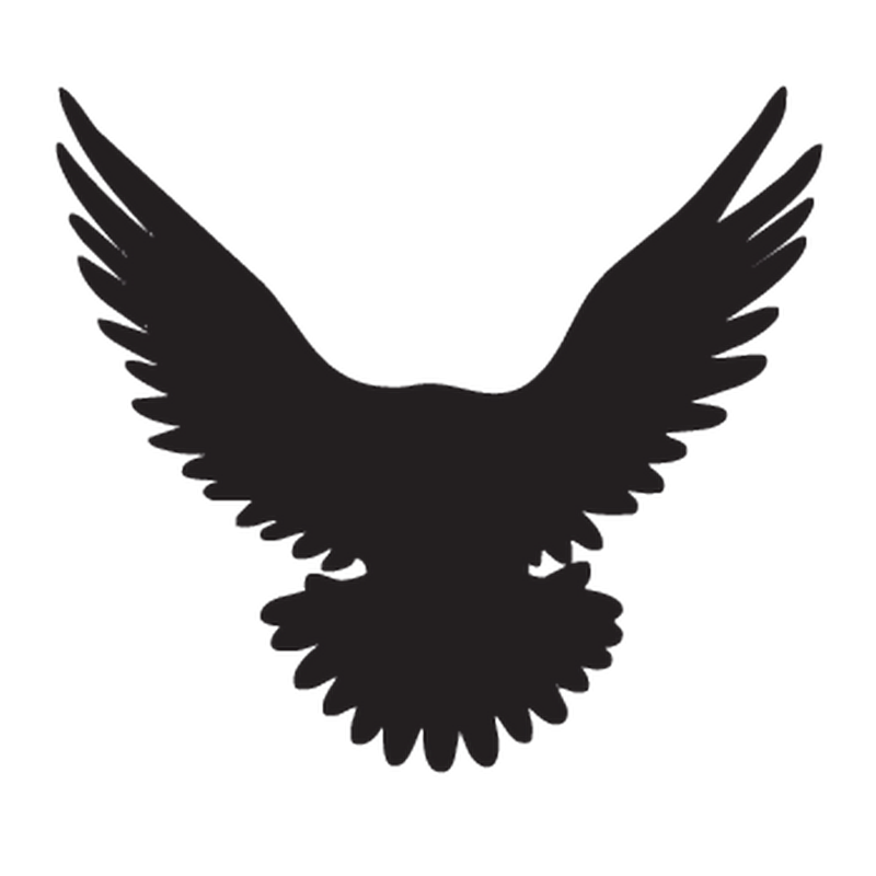 Eagle Renault Decal