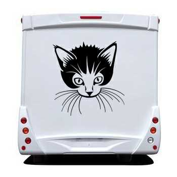 Kitten Camping Car Decal