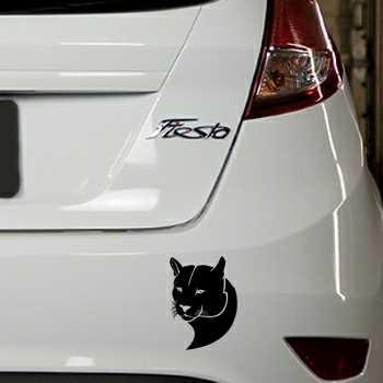 Puma Ford Fiesta Decal