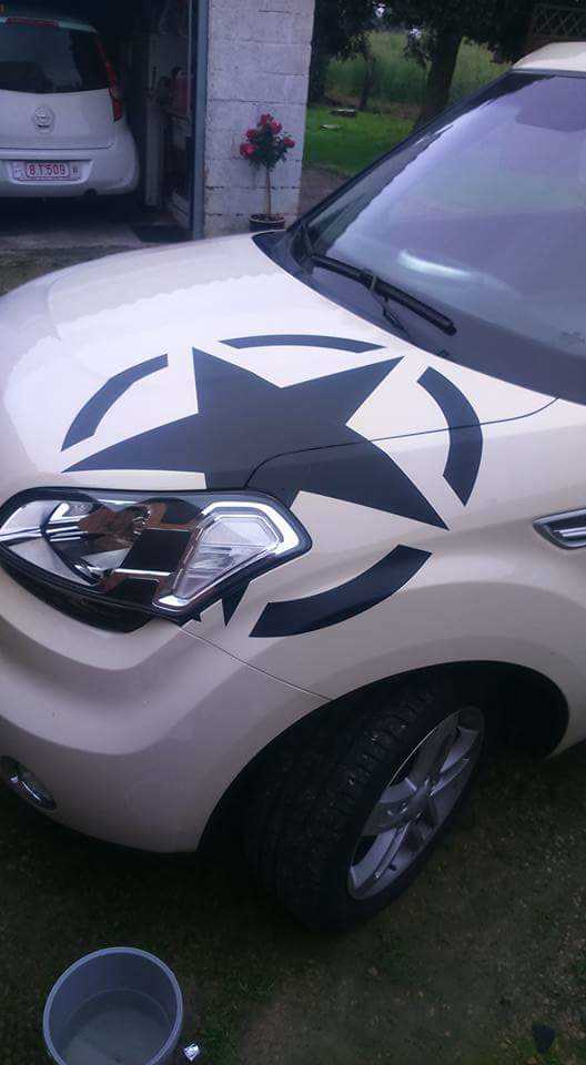 US ARMY STAR Decal