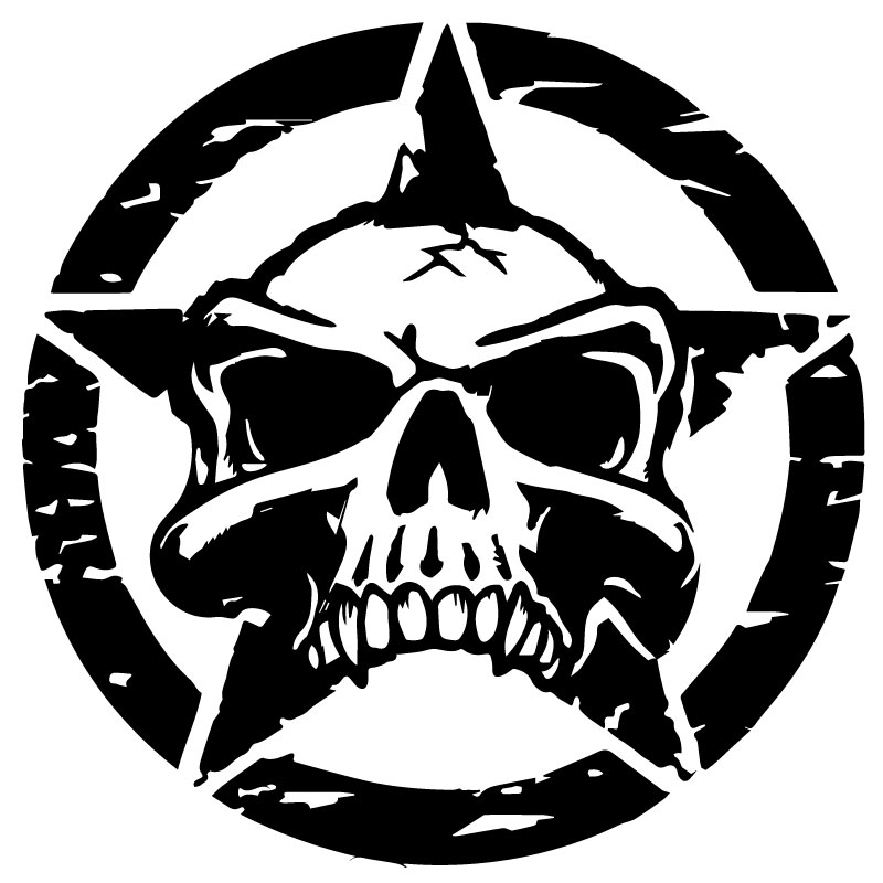 US ARMY STAR Gore Decal
