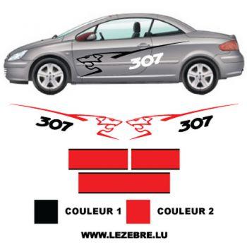 Kit stickers Peugeot 307