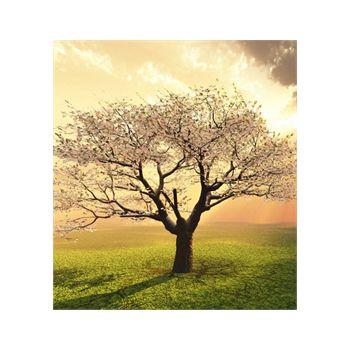 Decoration Sticker Flowering tree