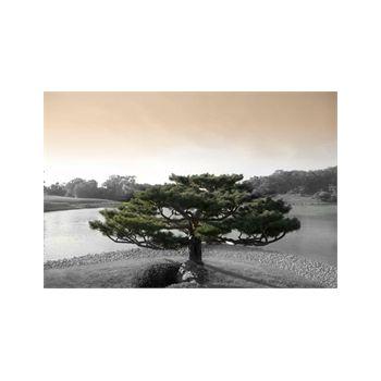 Decoration Sticker Japanese Zen Tree