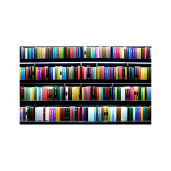 Bookcase Decoration Decal 4