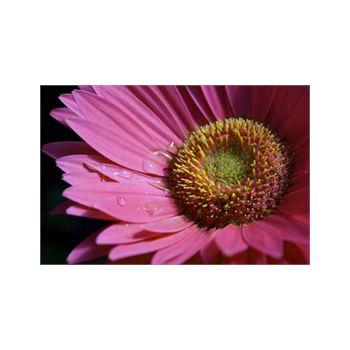 Sticker Géant Fleur