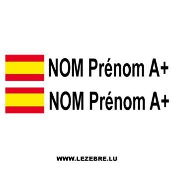 2x Spanish Flag Pilot / Co-pilot Custom Decals