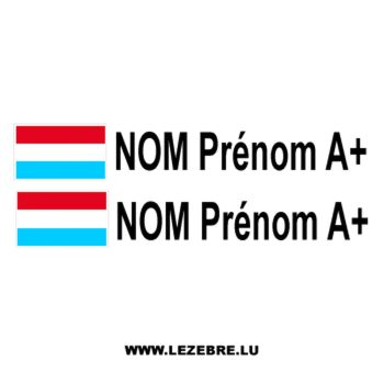 2x Luxembourg Flag Pilot / Co-pilot Custom Decals
