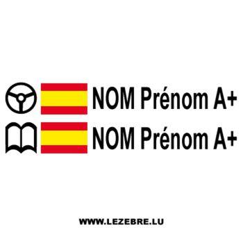 2x Spanish Flag Steering Wheel Pilot / Co-pilot Custom Decals