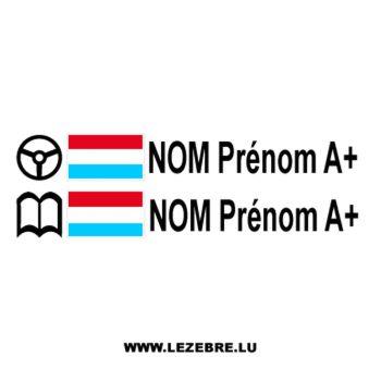 2x Luxembourg Flag Steering Wheel Pilot / Co-pilot Custom Decals