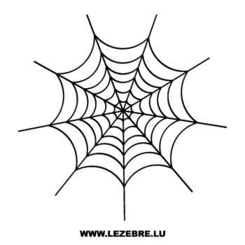 Spider Web Decal 2