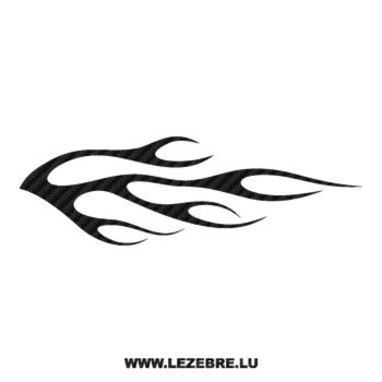 Flame Carbon Decal 111