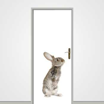 Little Rabbit door decal