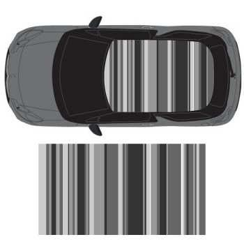 Graphic Art Shades of Grey car roof sticker