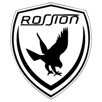 Rossion auto logo Decal