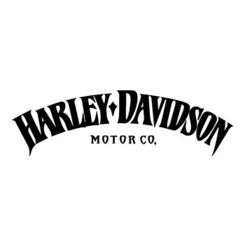 Harley-Davidson Iron 883 logo motorcycle Decal