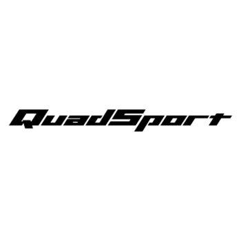 Sticker Suzuki Quadsport Logo 2012