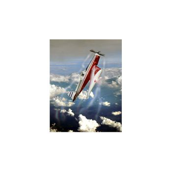 Sticker Déco Avion Freestyle