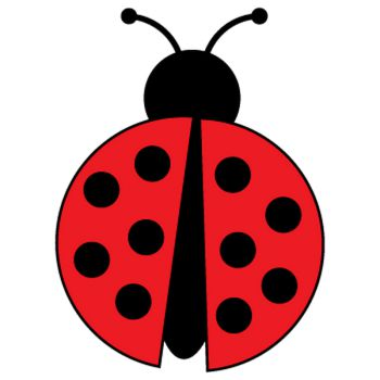 Little Ladybug Decal