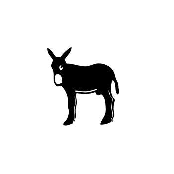 T-Shirt Catalan donkey Burro