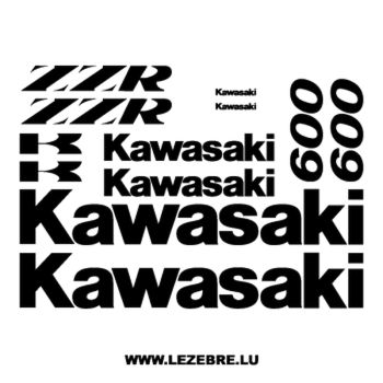 Kit Stickers Kawasaki ZZR 600