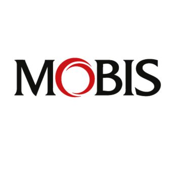s Mobis Decal