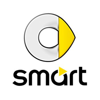 Smart Logo Decal