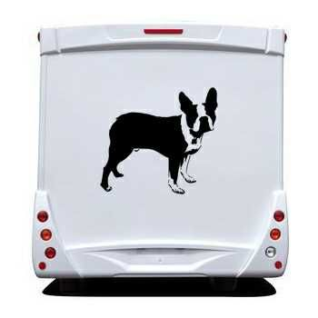 Sticker Camping Car Boston Terrier