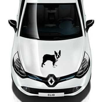 Boston Terrier Renault Decal