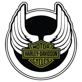 Harley Davidson Wings Decal 1