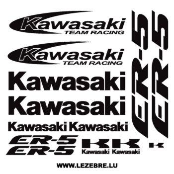 Kawasaki ER-5 decals set