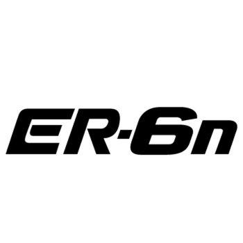 Kawasaki ER 6n Decal